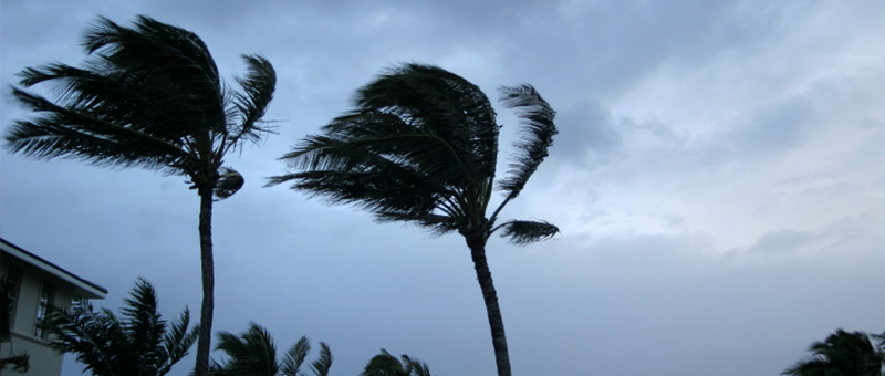 Helping you with Natural Disaster and Hurricane Property Damage Claims in Orlando